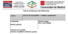 DISCOS DE EQUILIBRIO