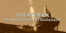 Reportaje: Colmenar Viejo