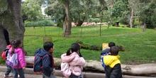 Visita al zoo 2019 6