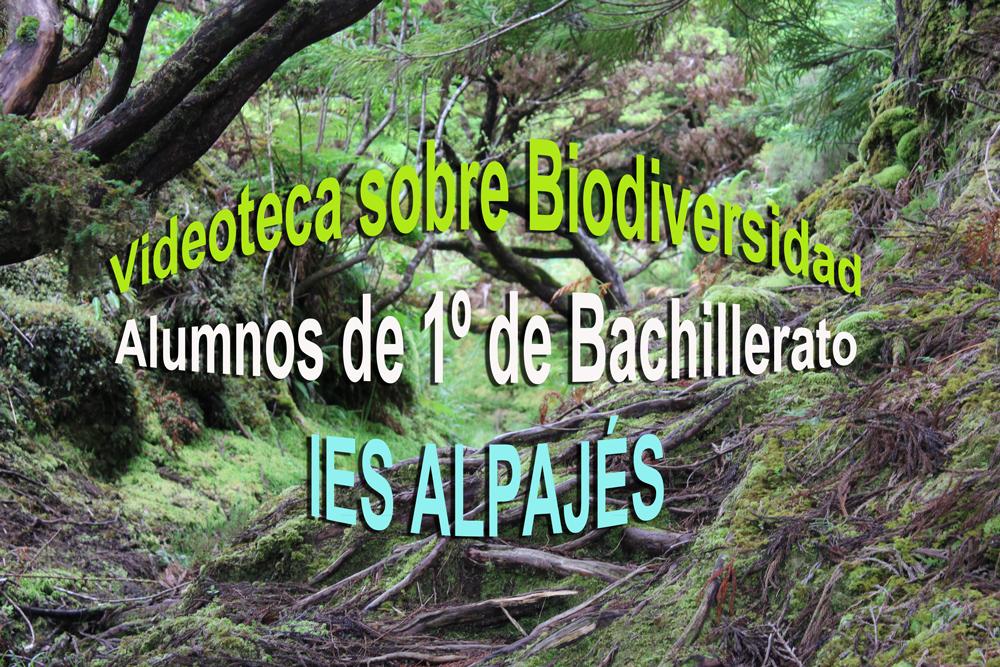 Portada de álbum Biodiversidad