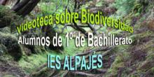 """Portada de álbum Biodiversidad"""""""