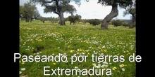 Paseando por tierras de Extremadura