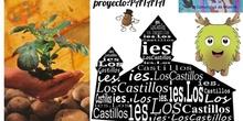 Proyecto Patata