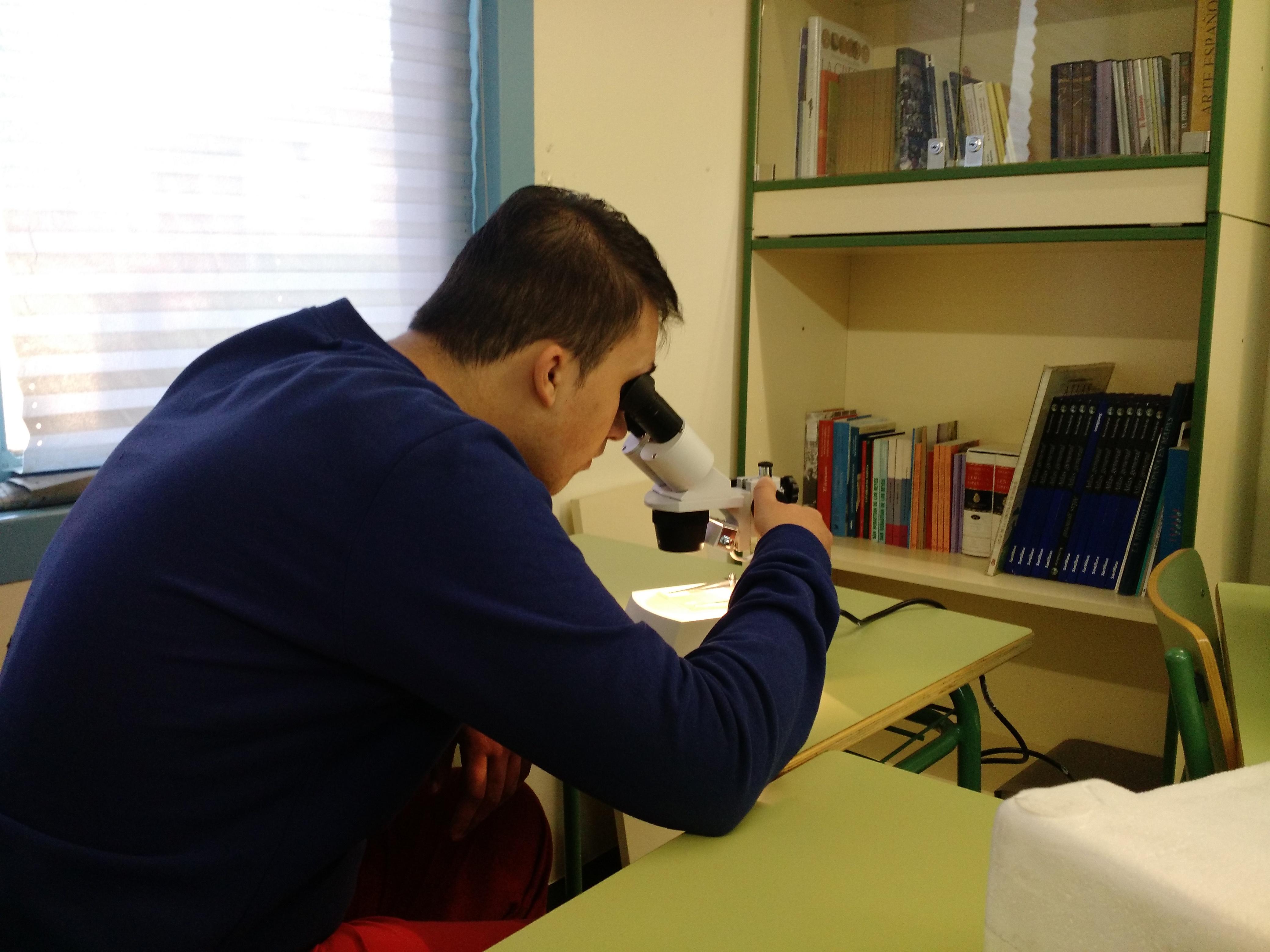 Usando el microscopio