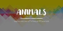 Presentación trabajos alumnado 2º EP - Natural Science, Animals
