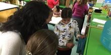 2019_Quinto B visita la biblioteca municipal_CEIP FDLR_Las Rozas 3