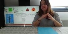 VÍDEO MANUALIDAD ÁRBOL DE INVIERO PARTE 1
