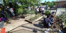 Proyecto Ecoescuela 2021_AJETREO_CEIP FDLR_Las Rozas