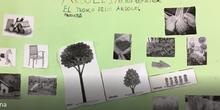 Árboles, arbustos y hierbas. Cristina 2º A