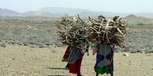 Mujeres trabajando, Rep. de Djibouti, áfrica