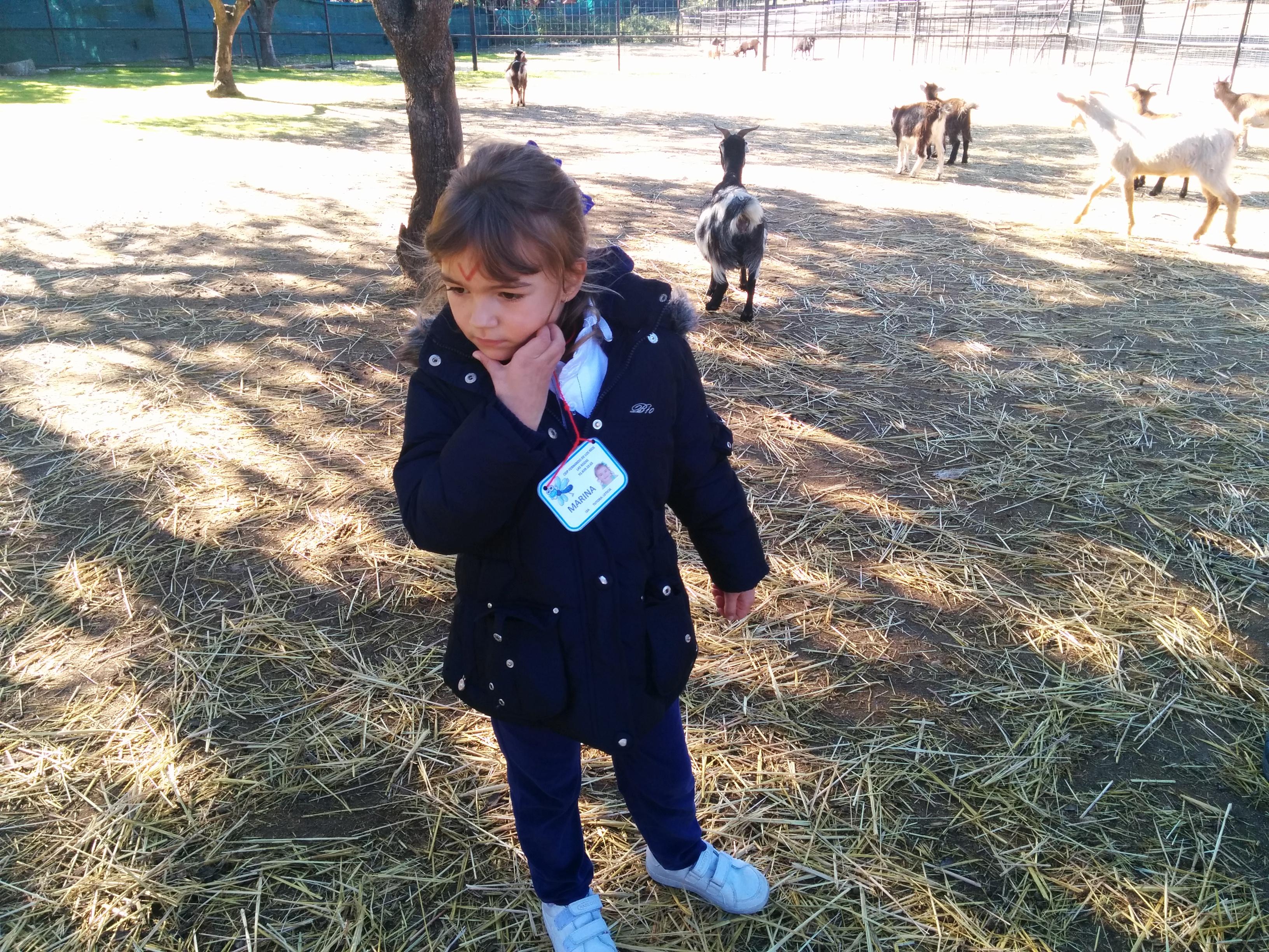 2016_inf 4 años a visita la granja 29