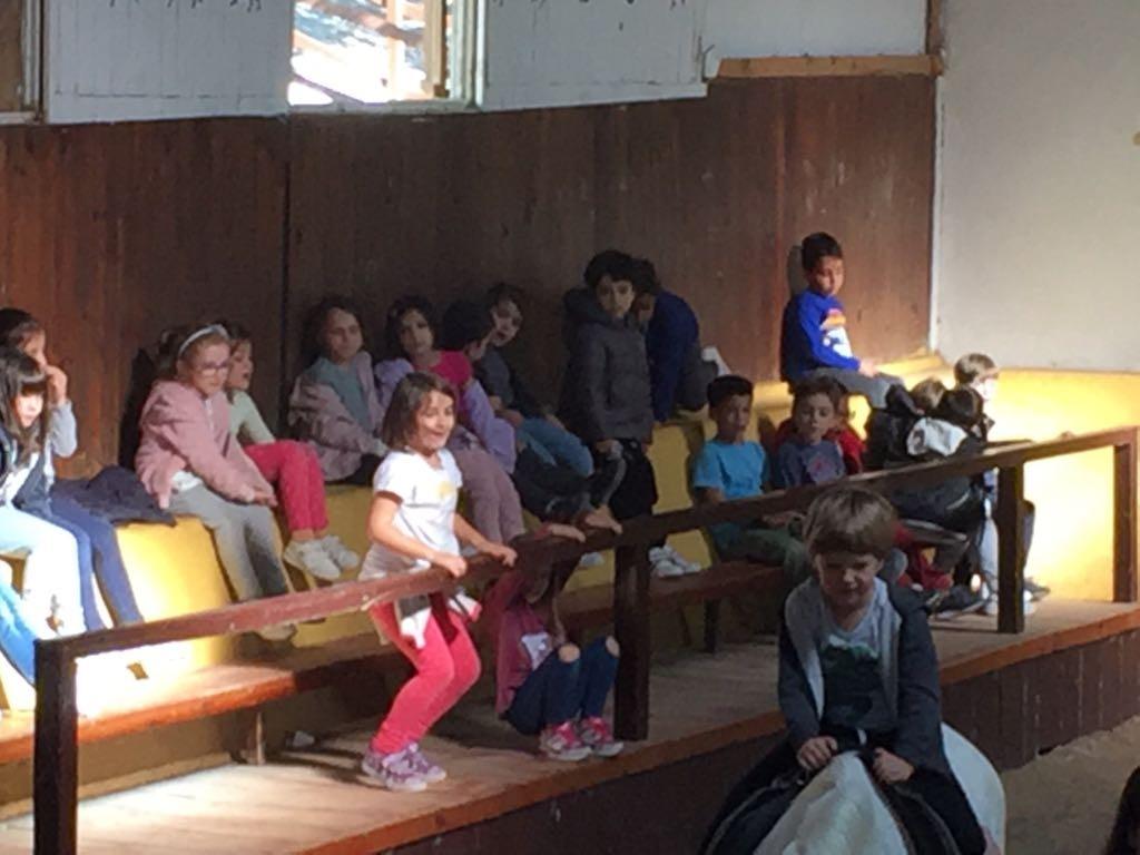 Granja Escuela 1º y 2º EP 2017-18_24 43