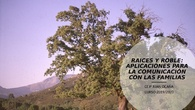 APLICACIONES RAICES Y ROBLE