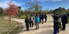 Parque Polvoranca 26