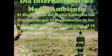 Atenea Dibuja la Música - Día Internacional del Medioambiente