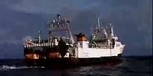 L'UE au secours des ecosystèmes marins vulnérables