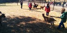 2016_inf 4 años a visita la granja 35