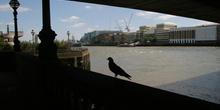 Debajo de un puente del río Támesis, Londres, Reino Unido