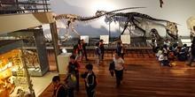 Excursión al museo de ciencias 24