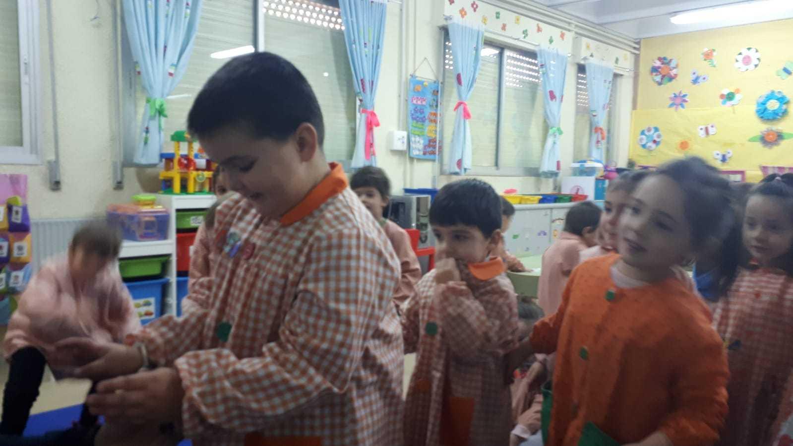 Educación vial 5