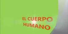 Proyecto del cuerpo humano en E.I.