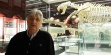 Entrevista. Enrique Baquedano, Director del Museo Arqueológico Reginal de Madrid