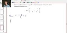 Matrices y Determinantes - Examen C Ejercicio 5