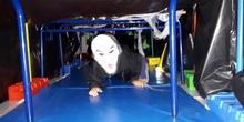 Halloween17 CEIP Vicente Ferrer 17