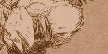 Los Caprichos en detalle 3