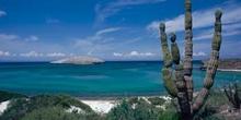 Paz, bahía de la