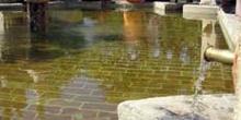 Fuente del Olivo en el Patio de los Naranjos, Mezquita de Córdob