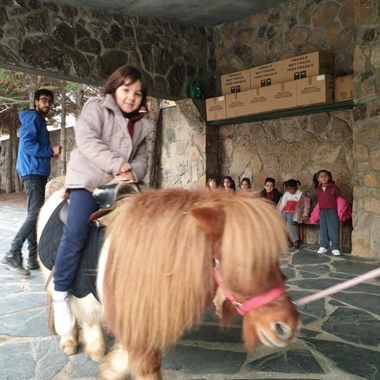 Excursión a la granja (Infantil) 11