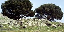 Altar de Zeus en Pérgamo, Turquía