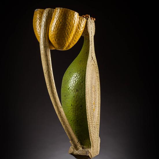 IES_SANISIDRO_MUSEO_Botanica_052