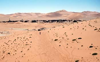 Sendero en el desierto, Namibia