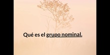 PRIMARIA - 4º- GRUPO NOMINAL - LENGUA - P. T. - FORMACIÓN
