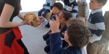 2017_04_04_Infantil 4 años en Arqueopinto 1 36