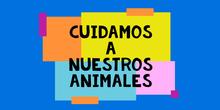 PRECONSOLIDACIÓN. HABILIDADES DE LA VIDA COTIDIANA. CUIDAR ANIMALES. CPEE MARIA MONTESSORI.