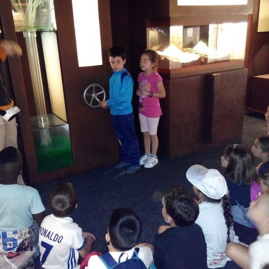 Visita a la exposición El Bosque. 1º 2º Primaria. CEIP Pinocho. 2016/17 29