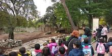 Visita al zoo 2019 16