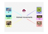 PRIMARIA 1º - CIENCIAS DE LA NATURALEZA - ANIMAL MOVEMENTS