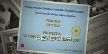REFLEJOS G9G10 PEAC 2020 SUR