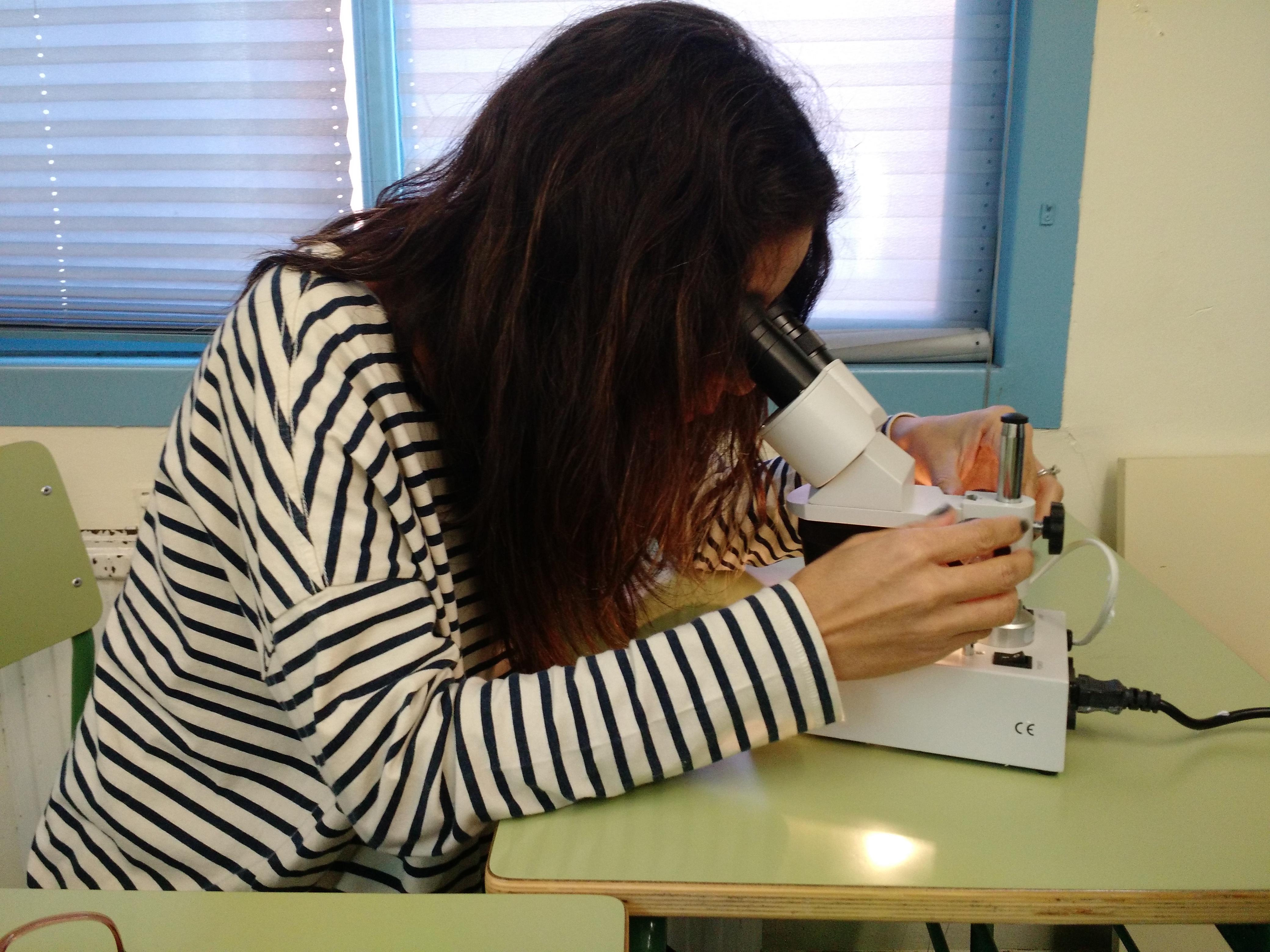 Usando el microscopio 5