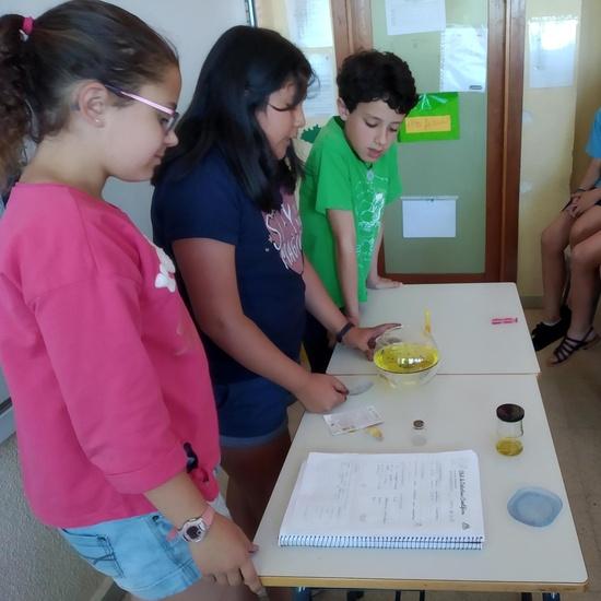 2019_06_La ciencia invade 5º_CEIP FDLR_Las Rozas 2