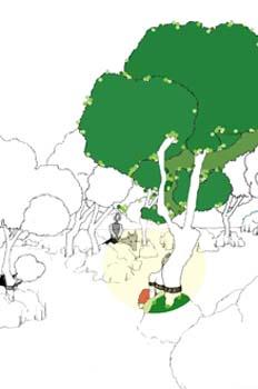Primera salida. Don Quijote en el bosque