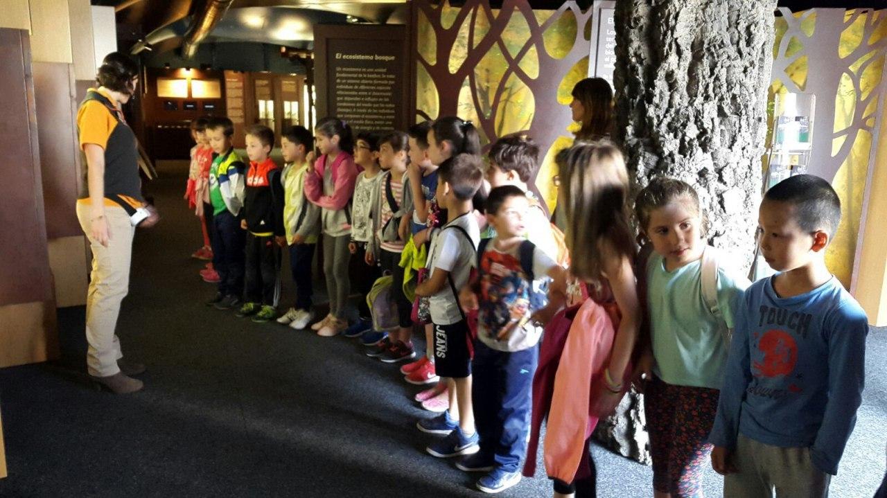 Visita a la exposición El Bosque. 1º 2º Primaria. CEIP Pinocho. 2016/17 24