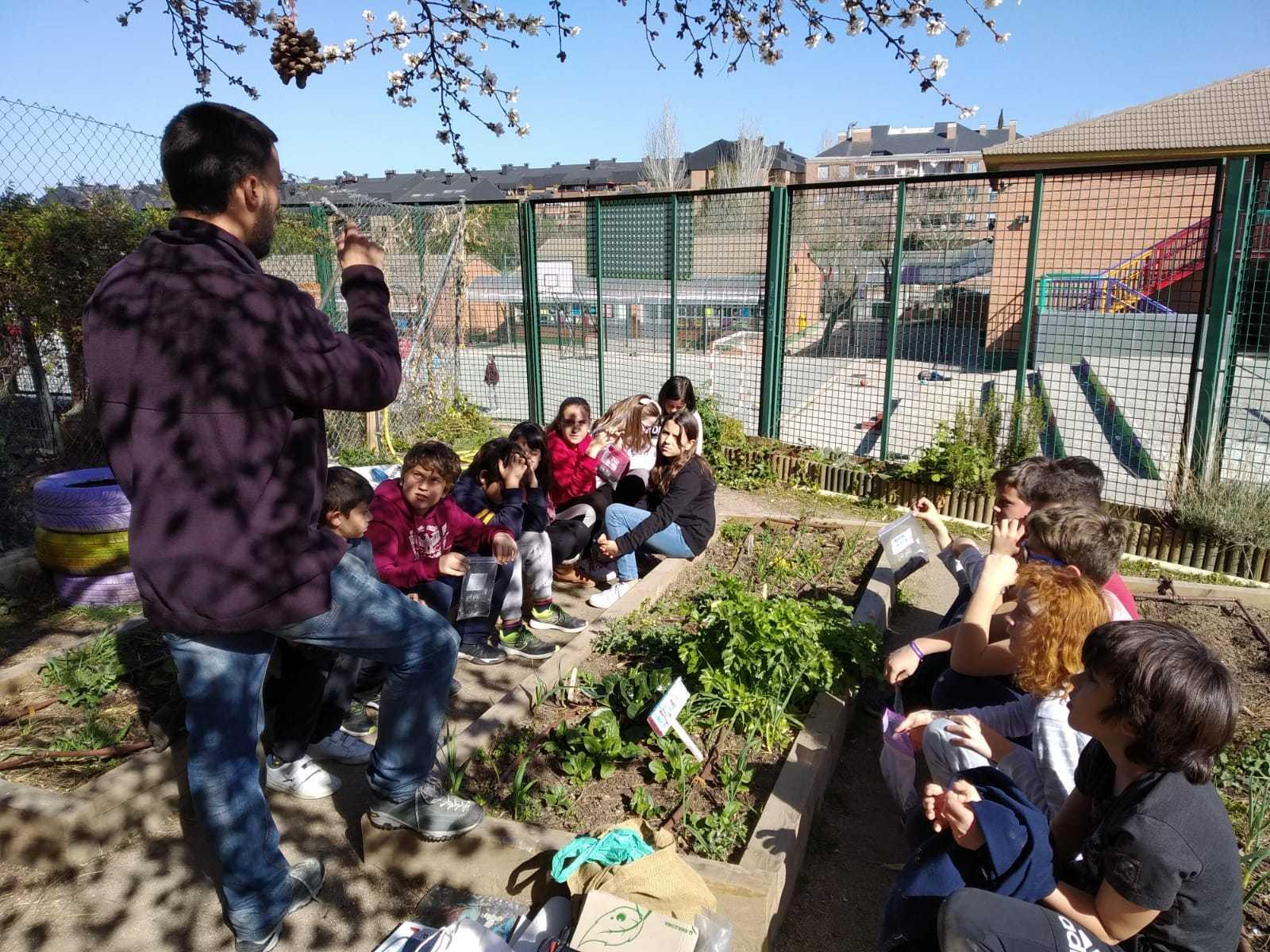 2019_02_24_Quinto termina febrero con las actividades de huerto_CEIP FDLR_Las Rozas_2019 3