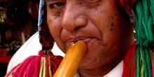Músico andino, Perú