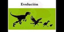 SECUNDARIA 4º - LA TEORÍA DE LA EVOLUCIÓN - BIOLOGÍA