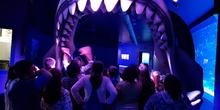 Aquarium Xanadú II 3ºB  6